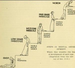Clasificación de los defectos de inteligencia en 1916, Virginia - EEUU