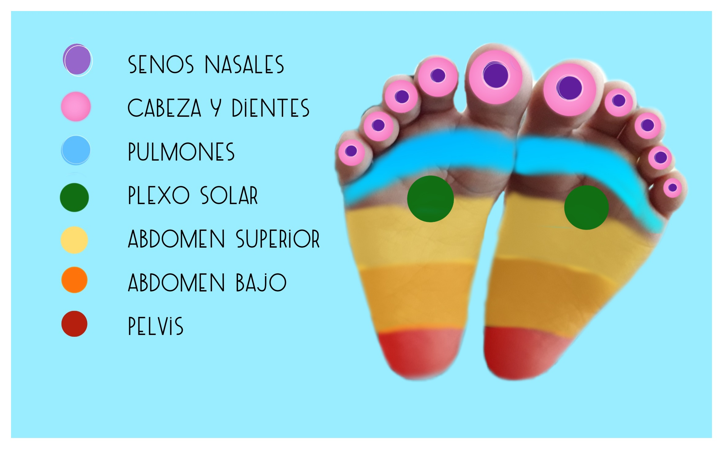 imagen zonas de reflexoterapia podal infantil